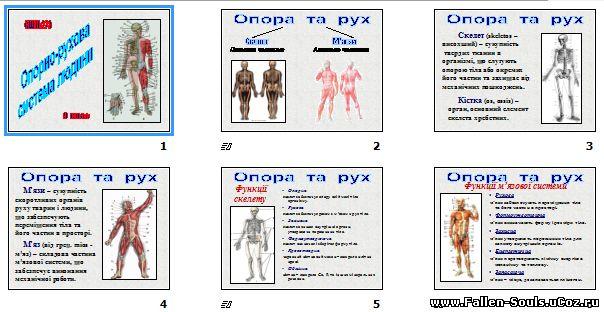 Скачати готову презентацію PowerPoint з Біології на тему Опорно-рухова система людини завантажити