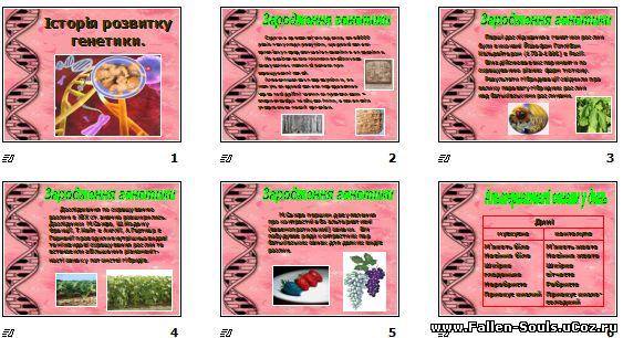 Скачати готову презентацію PowerPoint з Біології [ Анатомії ] на темуІсторія розвитку генетики завантажити